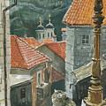 Cat Of The Town Of Kotor by Sakurov Igor
