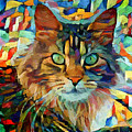 Cat On Colors by Yury Malkov
