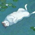 Cat On Vacation by Kazumi Whitemoon