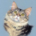 Cat Portrait by Deb Owens-Lowe