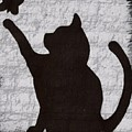 Cat  Shadow  And Butterfly  by MaryLee Parker
