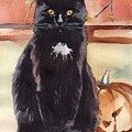 Cat With The Pumpkin by Yuliya Podlinnova