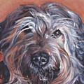 Catalan Sheepdog by Lee Ann Shepard