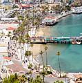 Catalina Island Avalon Waterfront Aerial Photo by Paul Velgos