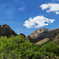 Catalina Mountains In Tucson Arizona by Billy Bateman
