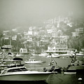 Catalina Island by Sonal Dave