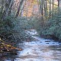 Cataloochee Creek by Joshua Bales