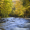 Cataloochee Valley River by Richard Steinberger