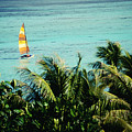 Catamaran On Tumon Bay by Kyle Rothenborg - Printscapes