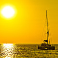 Catamaran Sailboat On Golden Sunset by Brch Photography