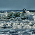 Catching A Wave by Mike Martin