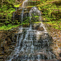 Cathedral Falls 3 by Steve Harrington