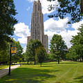 Cathedral Of Learning University Of Pittsburgh by Amy Cicconi