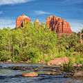 Cathedral Rock 313 by Maria Struss