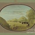 Catlin And Two Companions Shooting Buffalo by George Catlin