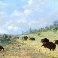 Catlin: Elk & Buffalo by Granger