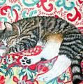 Catnap Time by Minaz Jantz