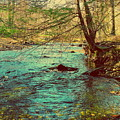 Catoctin Spring by Paul Kercher