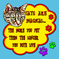 Cats Are Magical by David G Paul