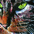 Cats Eyes 11 by John D Benson