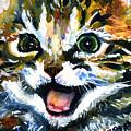 Cats Eyes 15 by John D Benson