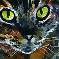 Cats Eyes 16 by John D Benson
