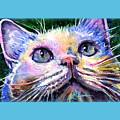 Cats Eyes 2 by John D Benson