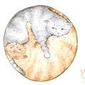 Cat's Harmony by Yana Sadykova