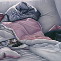 Cats Hide In Blankets by Carol Wilson