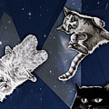 Cats In Space by Mary Williams