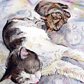 Cats In Watercolor by Maria Reichert