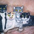 Cats by Joseph Sandora Jr