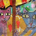 Cats by Roger Muntes