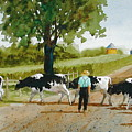 Cattle Crossing by Faye Ziegler
