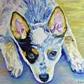 Cattle Dog Puppy by Suzanne Leonard