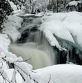 Cattyman Falls In Winter - Vertical by Larry Ricker