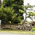 Causland Memorial Park In Anacortes by Tom Cochran