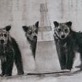Caution Bears by Susie Gordon
