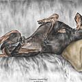 Caution Guard Dog - Doberman Pinscher Print Color Tinted by Kelli Swan