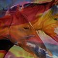 Cavalos by Ricardo Vieira