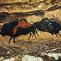 Cave Art: Bison by Granger