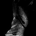 Cave Of Seduction by Pavel Jelinek