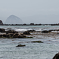 Cayucos Coast B3930 by Stephen Parker