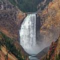 Lower Yellowstone Falls by Lynn Sprowl