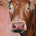 Cecilia The Cow by Cari Humphry