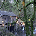 Cedar Creek Grist Mill by Larry Keahey