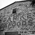 Cedar Key Sea Foods by David Lee Thompson