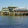 Cedar Key Waterfront by D Hackett