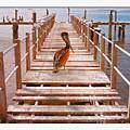 Cedar Key Wharf by John Breen