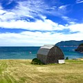 Cedar Shingles Barn By The Ocean by Cristina Stefan